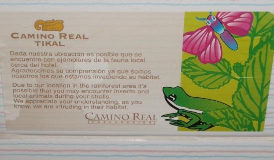 Camino Real Tikal: There are insects here!