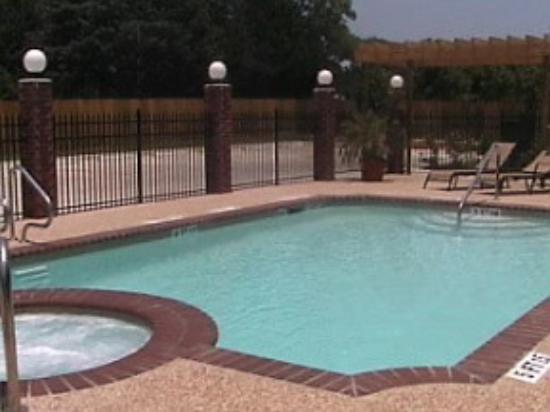 Comfort Suites Texas Ave. : Pool
