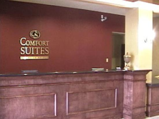 Comfort Suites Texas Ave.: Front Desk
