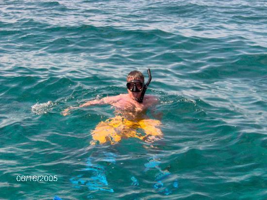 Royal West Indies Resort: Snorkeling