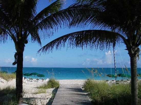 Royal West Indies Resort: Your path to the beach from resort grounds