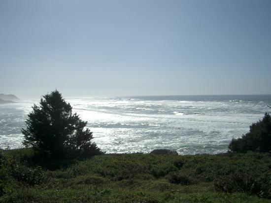 Tillicum Beach Park-billede