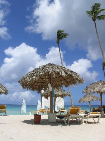 Iberostar Hacienda Dominicus: A palapa on the beach, don't waste your time waking up early, most spots on the beach are...