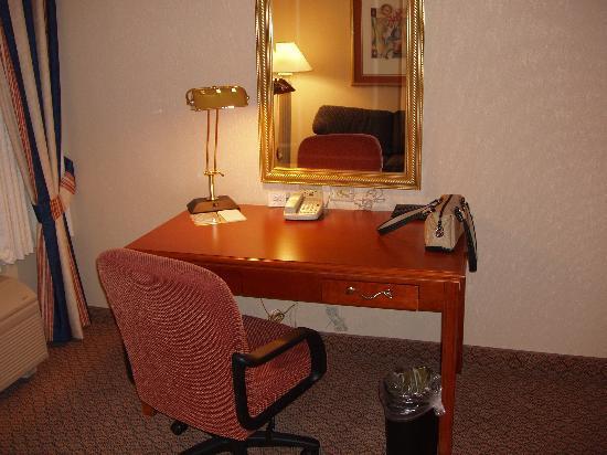 Hilton Garden Inn LAX/El Segundo: Desk