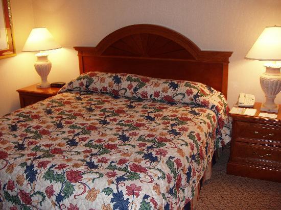 Hilton Garden Inn LAX/El Segundo: Bed & Nightstands
