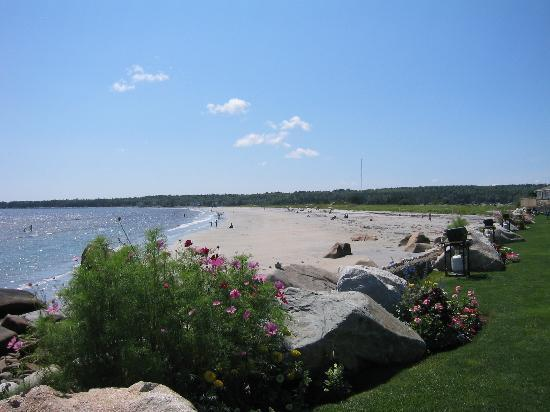 Summerville Centre, Canada: Beach