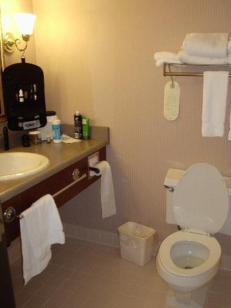 Best Western Agate Beach Inn : Bathroom