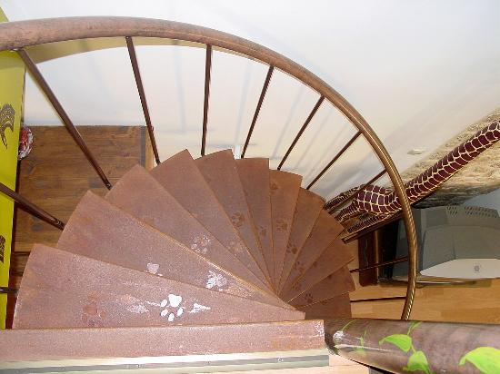 Suite 259 : Staircase between the main floor and the loft