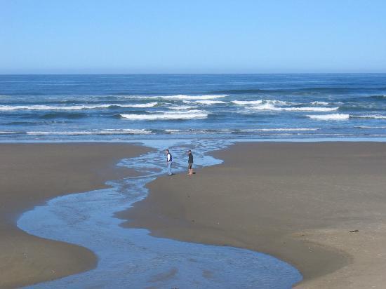Surf Sand Cannon Beach Reviews