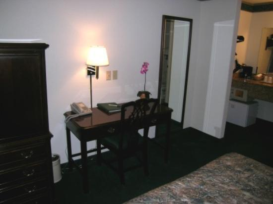 Emerald Dolphin Inn: Desk area