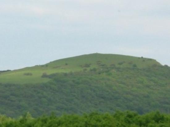 Mornington House: View of far away hill
