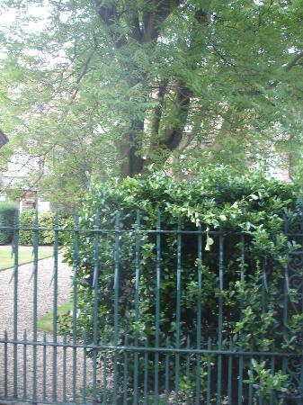 The Montague on The Gardens: view from Ground Floor Garden facing king room