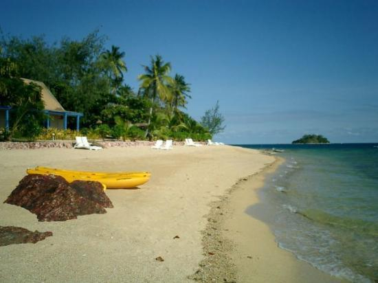 "Malolo Island Resort: The ""busy"" beach!"