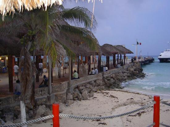 The Royal Playa del Carmen: grounds