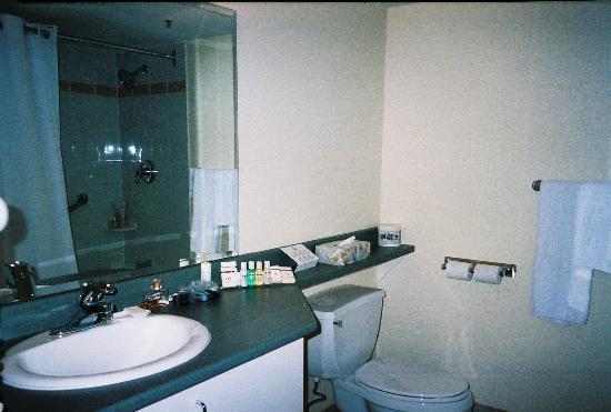 Hotel Faubourg Montreal : Bath room