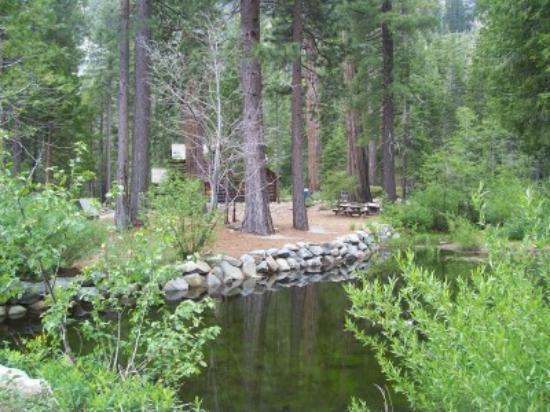 South Lake Tahoe, Californie : Pond by the giftshop