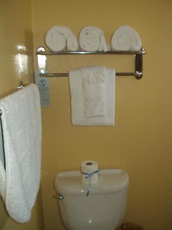 Monterey Bay Lodge: MBL-Bathroom
