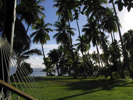 Jean-Michel Cousteau Resort: Lounging in our hammock
