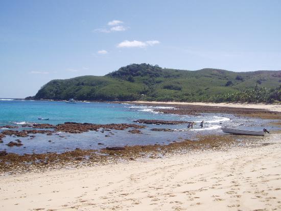 Octopus Resort : Beach at low tide