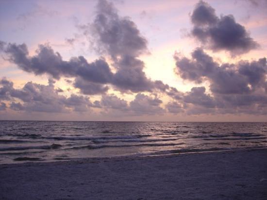 Marco Beach Ocean Resort照片
