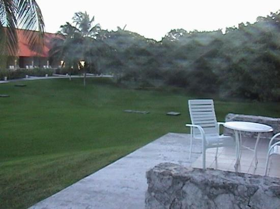 Presidente Inter-Continental Cozumel Resort & Spa: View from garden view room patio (beach is closer than you think!).