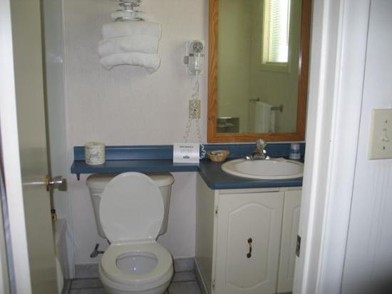 Travelodge Bracebridge: Small bathroom but clean and usable.