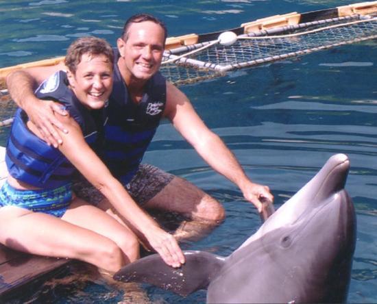Isole della Società, Polinesia francese: Dolphin Quest in Morrea
