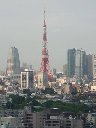 The Westin Tokyo: view of city from exec lounge