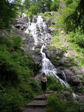 Vitalhotel Grüner Baum: Nearby water fall