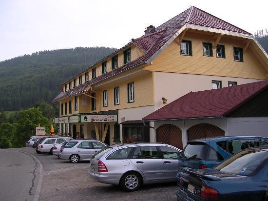 Vitalhotel Grüner Baum: Front