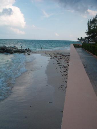 Xaman-ha Luxury Condominiums: Xaman-Ha beach looking south