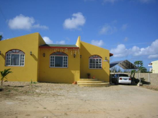 Marriott's Aruba Ocean Club: Local Color