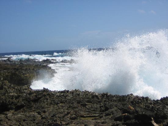 Marriott's Aruba Ocean Club: West Side of Island