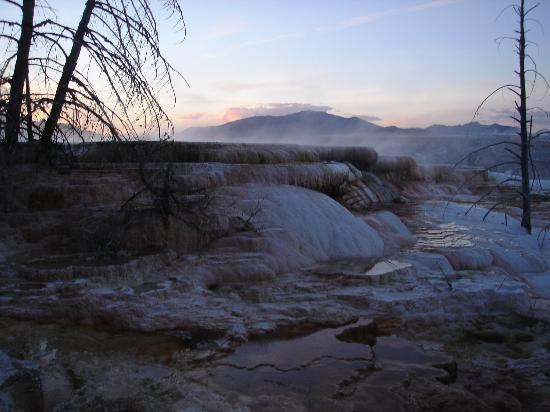 Mammoth Hot Springs Hotel & Cabins: Mammoth hot spring close to dusk
