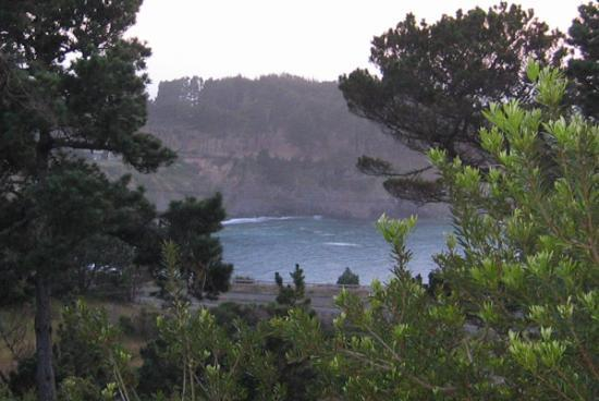 Brewery Gulch Inn: view from the BGI deck - Mendocino bay