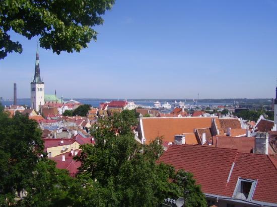 Baltic Hotel Vana Wiru: Tallinn view