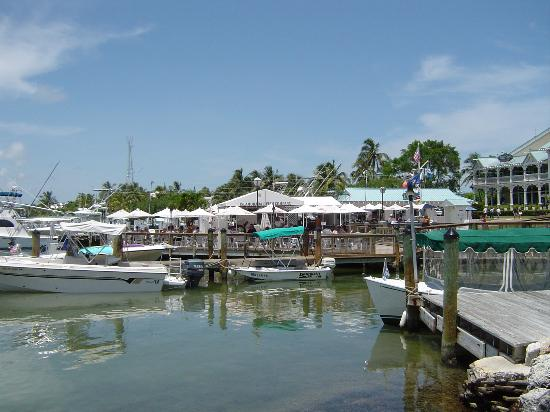 Islamorada Fish Company : You eat on the docks.
