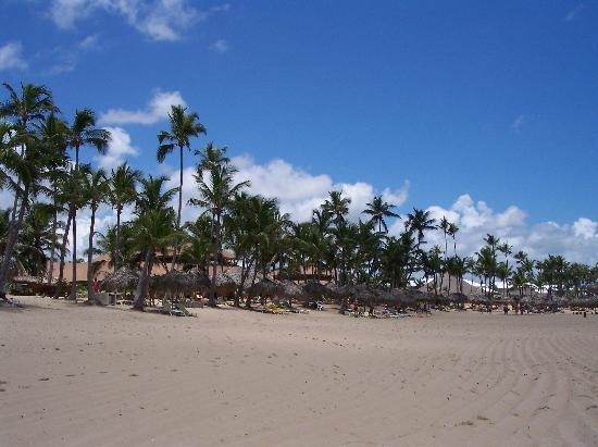 Excellence Punta Cana Photo