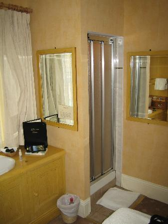 Kilronan House : Shower in suite
