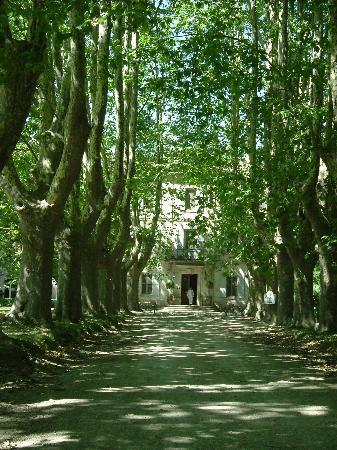 Le Chateau des Alpilles : the Chateau