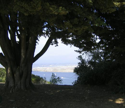 VIEW of SD from Point Loma