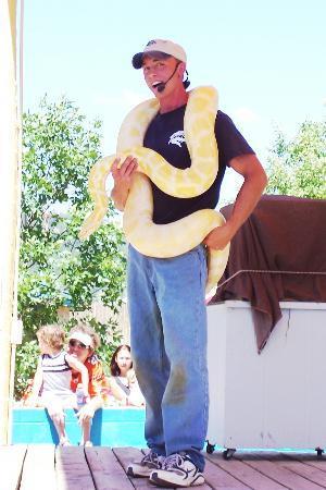 Reptile Gardens : The Snake Show - A Burmese Python!