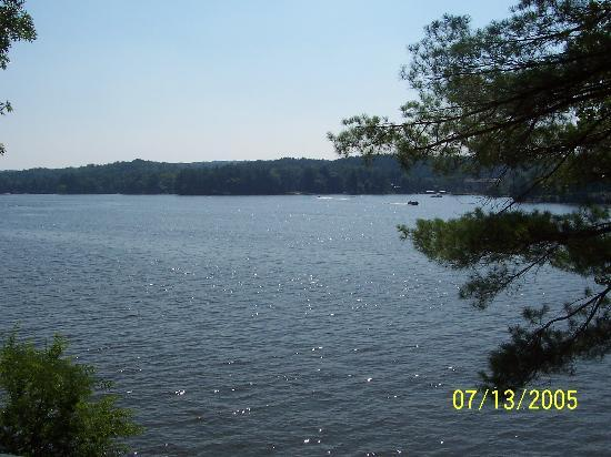 Wilderness on the Lake : What a view!!