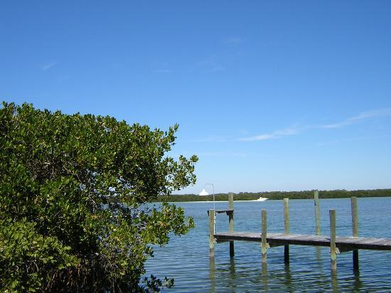 Longboat Key, Floryda: View of the intracoastal waterway from our private dock.