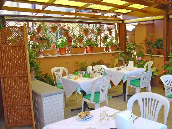 Hotel Concordia: The Roof Terrace