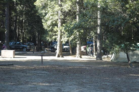 Upper Pines Campground: Upper Pines