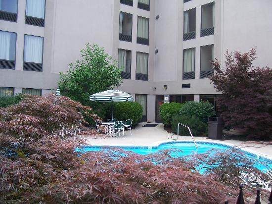 Comfort Inn Quantico: Pool Photo