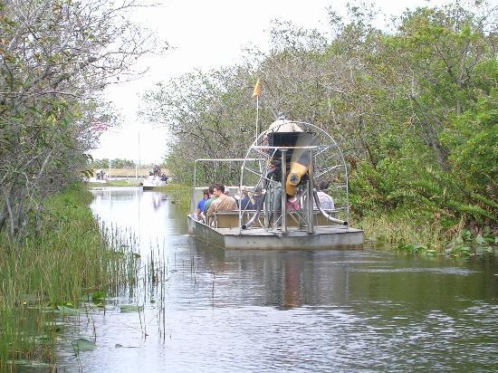 Four Points By Sheraton Miami Beach Everglades Air Boat Ride
