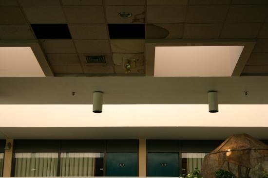 Ramada Owensboro : more shots of ceiling