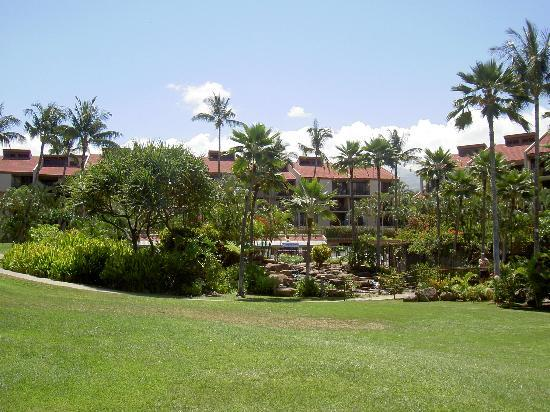 Building 5 at the Kamaole Sands. Unit 5-101 was on the right side, above and behind the pool...